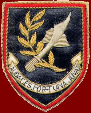 Tropas Comandos na Guerra do Ultramar - 14ªCCmds Angola 1967 1970 1b0af22997d